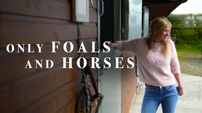 Only Foals and Horses - Documentary category image