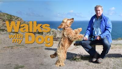 Walks with My Dog - Documentary category image