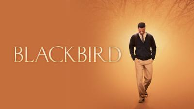 Blackbird - Drama category image